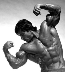 5433c-Franco_Columbu