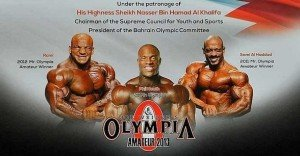 2013 amateur olympia