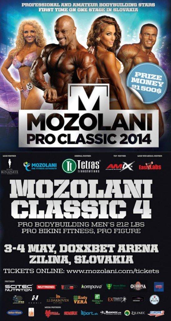 mozolani flyer 2014