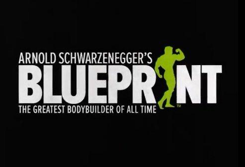 Watch the arnold schwarzenegger blueprint series arnold blueprint series malvernweather Image collections