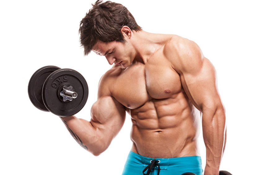 build-muscle-burn-fat-main