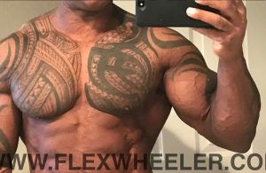 Flex Wheeler's progress update photo