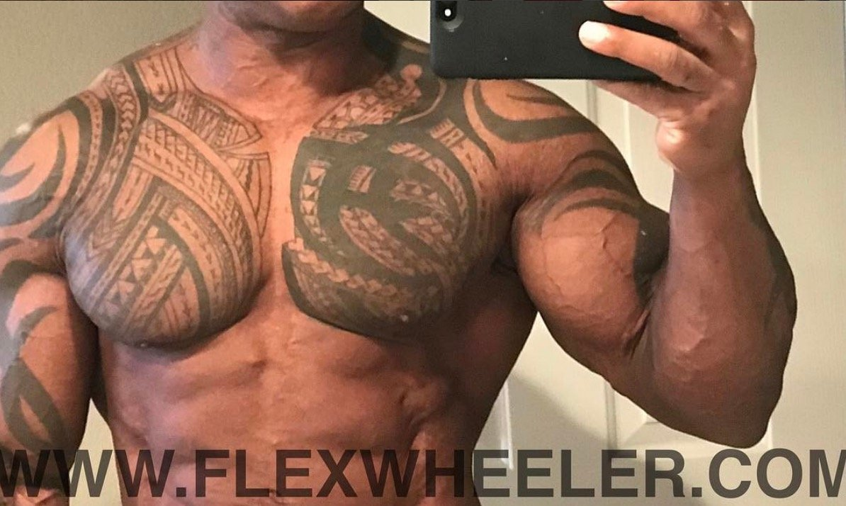 Flex Wheeler's progress update photo