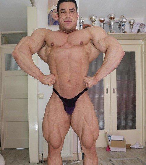 IFBB Elite Pro Lorenzo Leeuwe