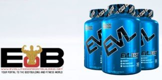 PRODUCT REVIEW: Evl Test