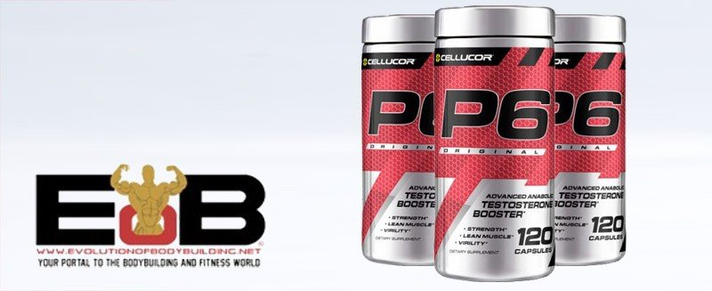 Cellucor P6 Original