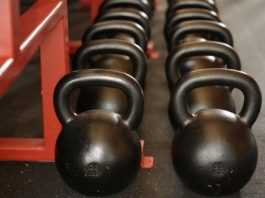bodybuilding equipment training muscles