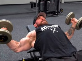 ultimate workout chest Seth Feroce