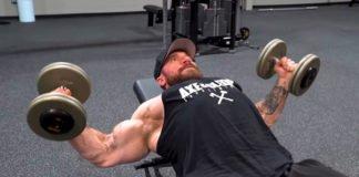 ultimate workout chest Seth Feroce