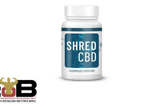 ShredCBD Fat burner review