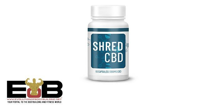 PRODUCT REVIEW: ShredCBD Fat burner
