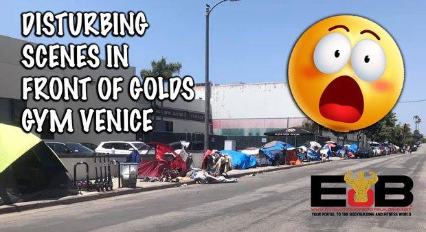 Gold's Gym venice