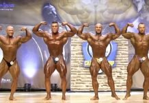 ifbb news bodybuilding
