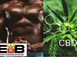 CBD bodybuilding